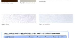 Demazy Max - Modèles de portes sectionnelles et portes d'entrée séparées
